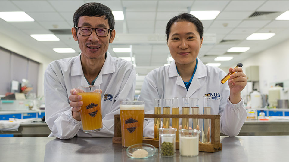 Researchers create probiotic beer that boosts immunity and improves gut health