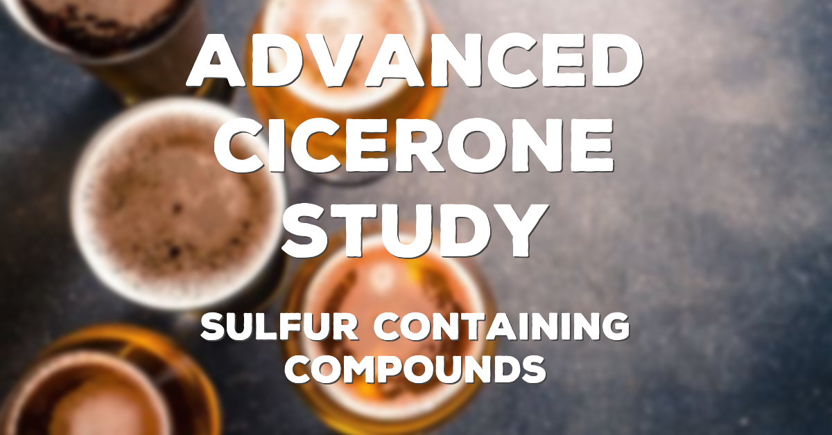 Advanced Cicerone Study: Sulfur-Containing Compounds